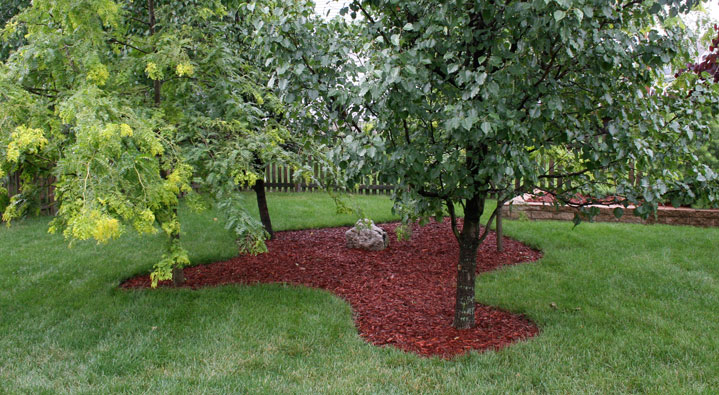 mulching learn the proper ways to mulch your trees. Black Bedroom Furniture Sets. Home Design Ideas